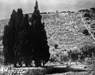 Góra Karmel, Ziemia Święta, Izrael, punkt, gdzie Bahá'u'lláh wskazał swojemu synowi 'Abdu'l-Bahowi miejsce, gdzie później miało zostać zbudowane mauzoleum i złożone szczątki Bába.